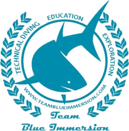 Team Blue Immersion